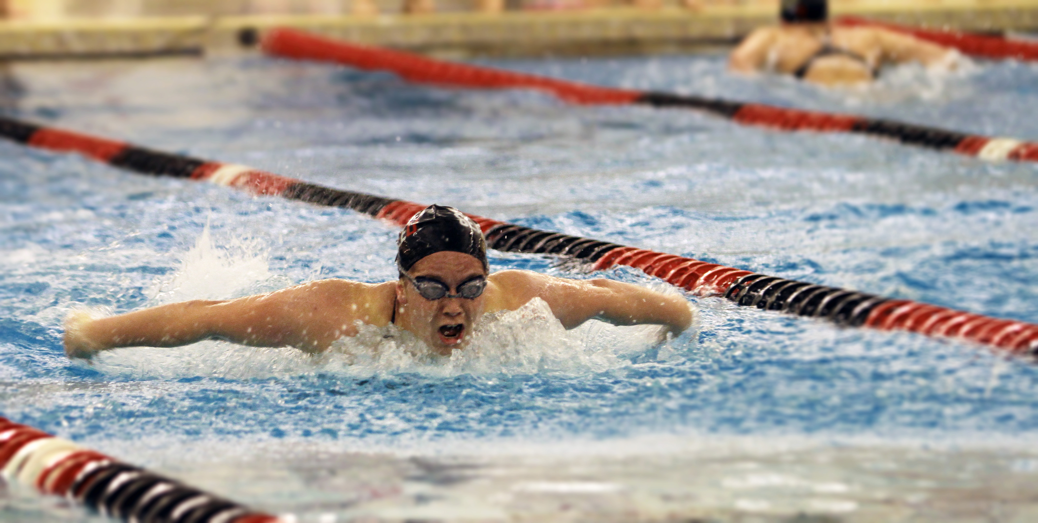 The Spectatorseattle University Swimmers Shine In Meet Against Idaho The Spectator